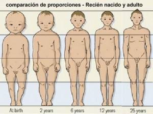 PORQUEACM1